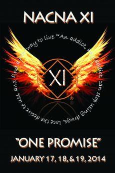 Richie-SSA-JFT Daily Meditation-NACNA XI-One Promise-January-17-19-2014-Mellville-NY